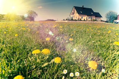 Verkauf einer Immobilie mit einem großen Garten im Frühling