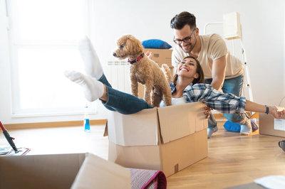 Lookmove la plateforme immobilière qui fait rimer exhaustivité avec fiabilité