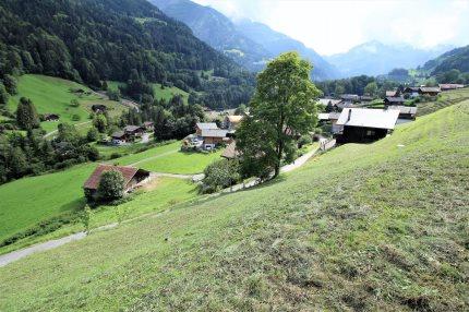 A Vendre Terrain à Val-d'IlliezAu coeur des Alpes pour les amoureux de la nature 1/3